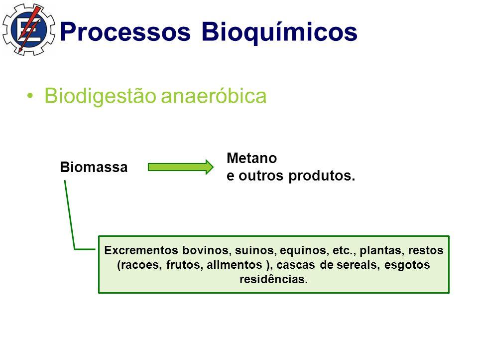Processos Bioquímicos Biodigestão anaeróbica Biomassa Metano e outros produtos.