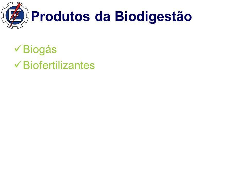 Produtos da Biodigestão Biogás Biofertilizantes