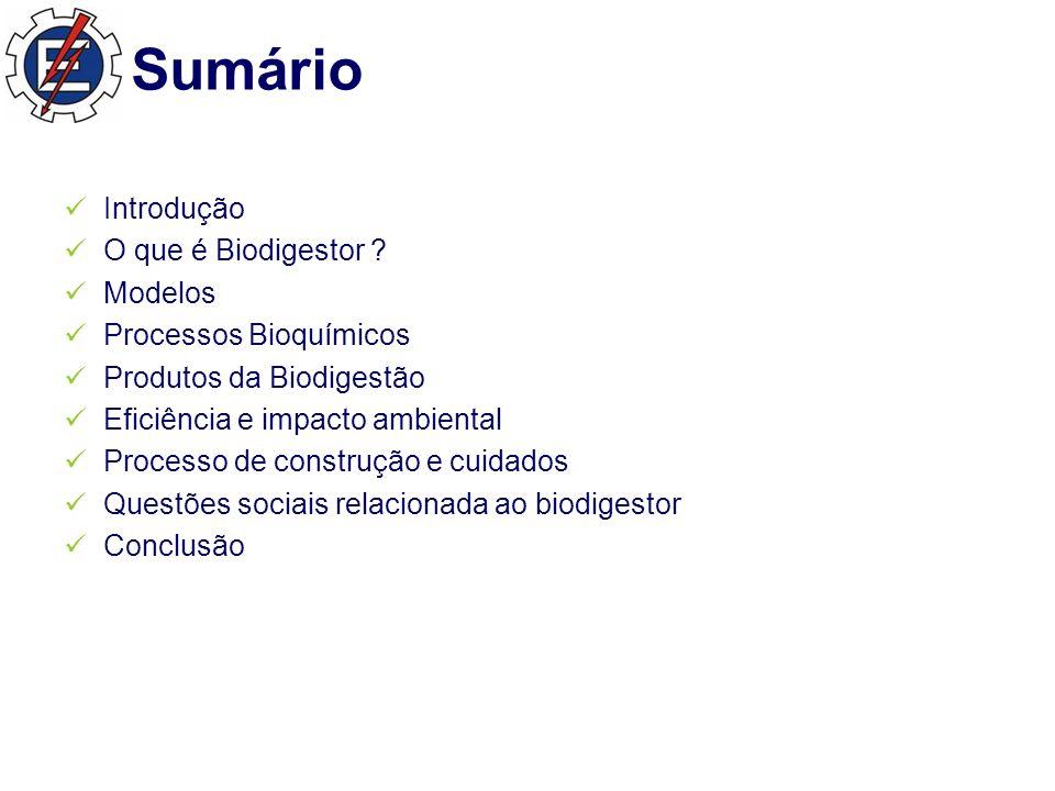 Sumário Introdução O que é Biodigestor .