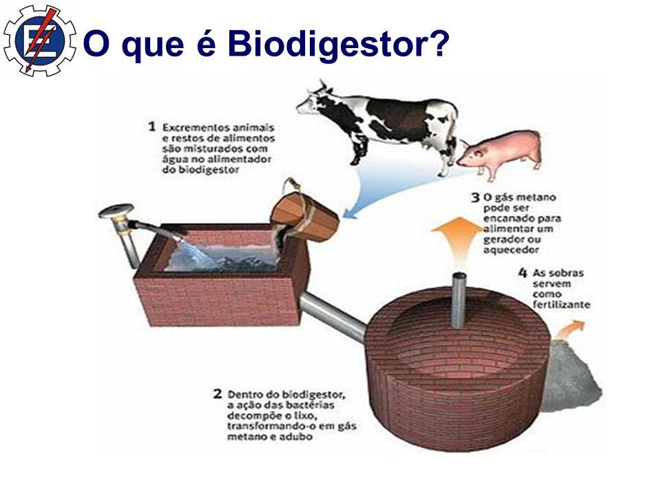 O que é Biodigestor?
