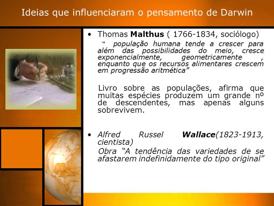 Ideias que influenciaram o pensamento de Darwin Thomas Malthus ( 1766-1834, sociólogo) população humana tende a crescer para além das possibilidades do meio, cresce exponencialmente, geometricamente, enquanto que os recursos alimentares crescem em progressão aritmética Livro sobre as populações, afirma que muitas espécies produzem um grande nº de descendentes, mas apenas alguns sobrevivem.