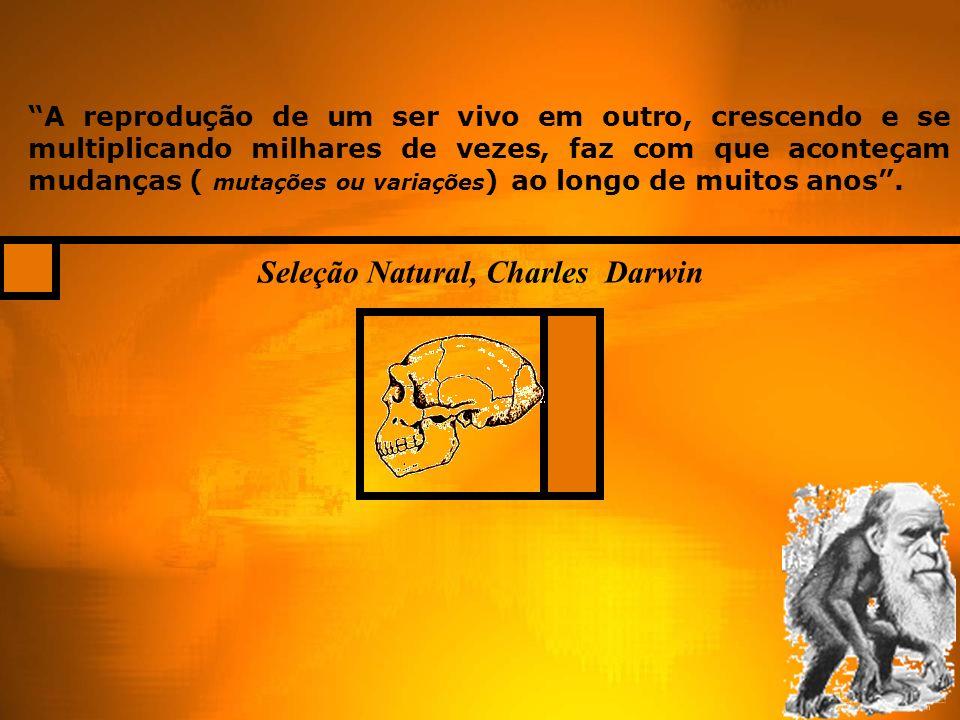 Seleção Natural, Charles Darwin A reprodução de um ser vivo em outro, crescendo e se multiplicando milhares de vezes, faz com que aconteçam mudanças ( mutações ou variações ) ao longo de muitos anos.