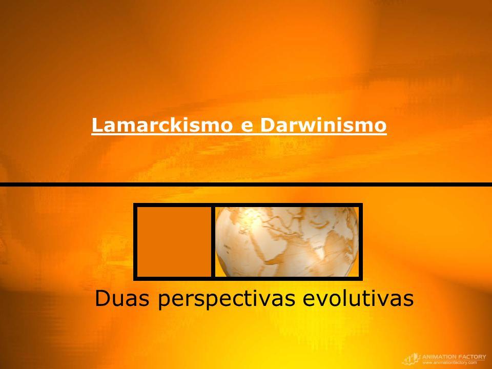 Lamarckismo e Darwinismo Duas perspectivas evolutivas