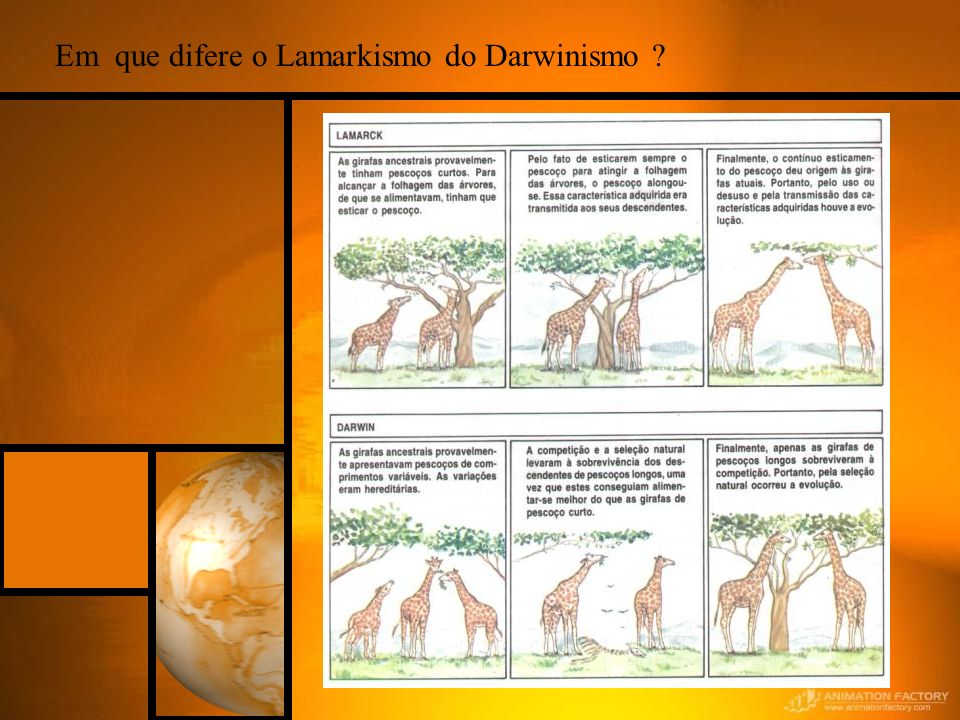 Em que difere o Lamarkismo do Darwinismo ?