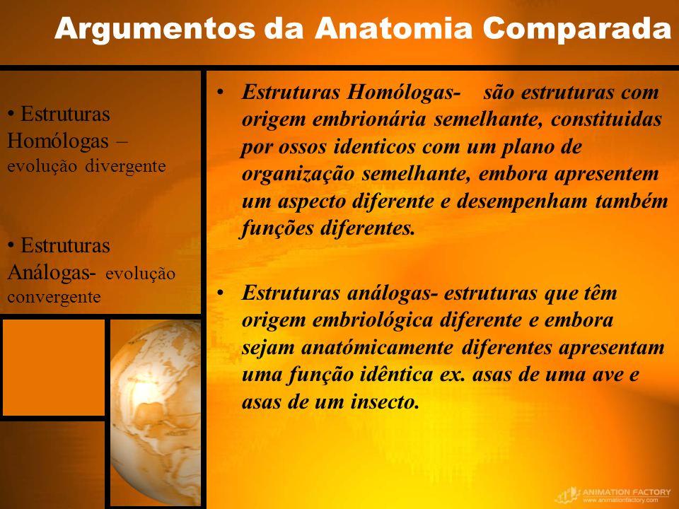 Argumentos da Anatomia Comparada Estruturas Homólogas- são estruturas com origem embrionária semelhante, constituidas por ossos identicos com um plano de organização semelhante, embora apresentem um aspecto diferente e desempenham também funções diferentes.