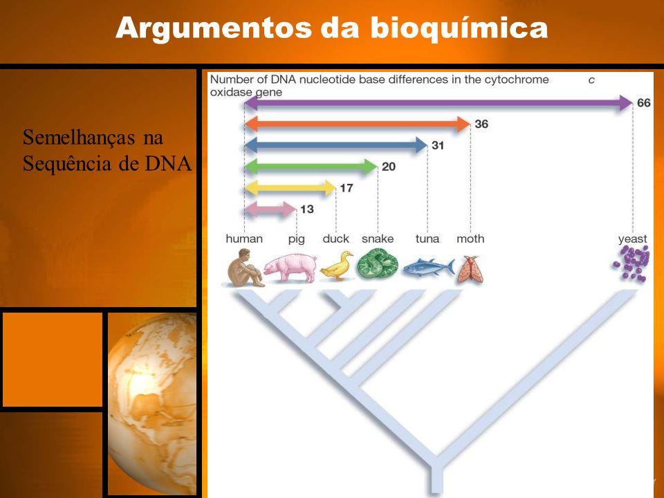 Argumentos da bioquímica Semelhanças na Sequência de DNA