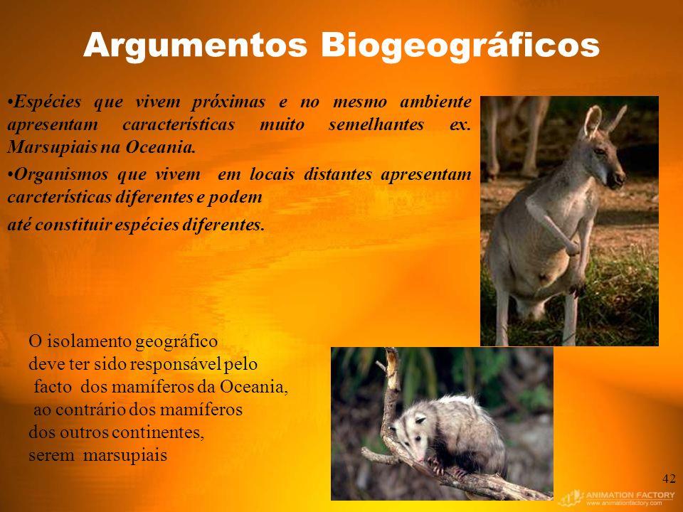 Argumentos Biogeográficos Espécies que vivem próximas e no mesmo ambiente apresentam características muito semelhantes ex.