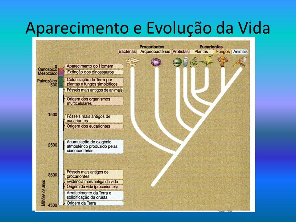 Aparecimento e Evolução da Vida