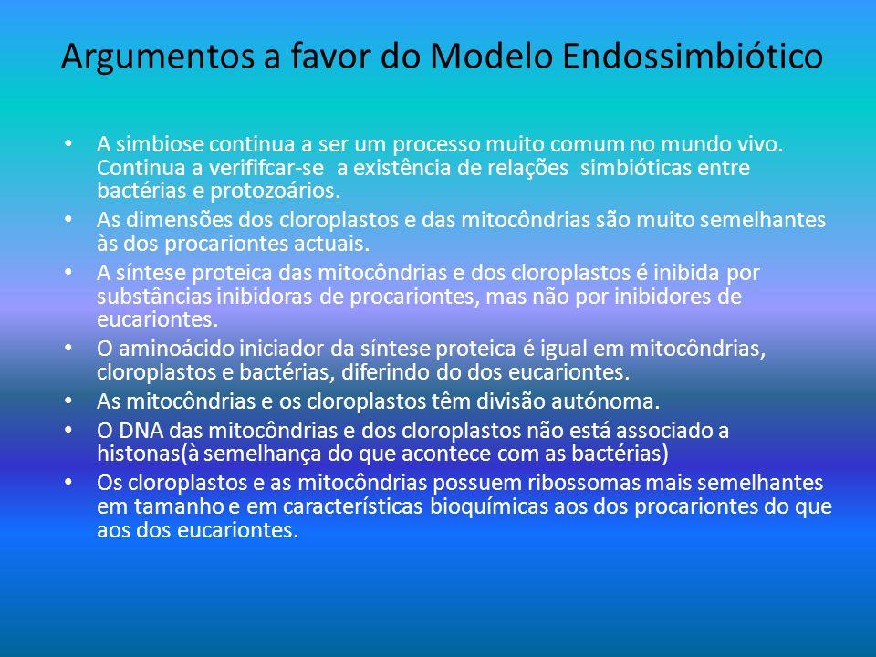 Argumentos a favor do Modelo Endossimbiótico A simbiose continua a ser um processo muito comum no mundo vivo. Continua a verififcar-se a existência de