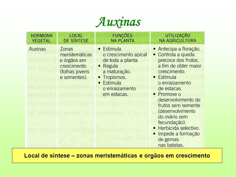 Auxinas Local de síntese – zonas meristemáticas e orgãos em crescimento