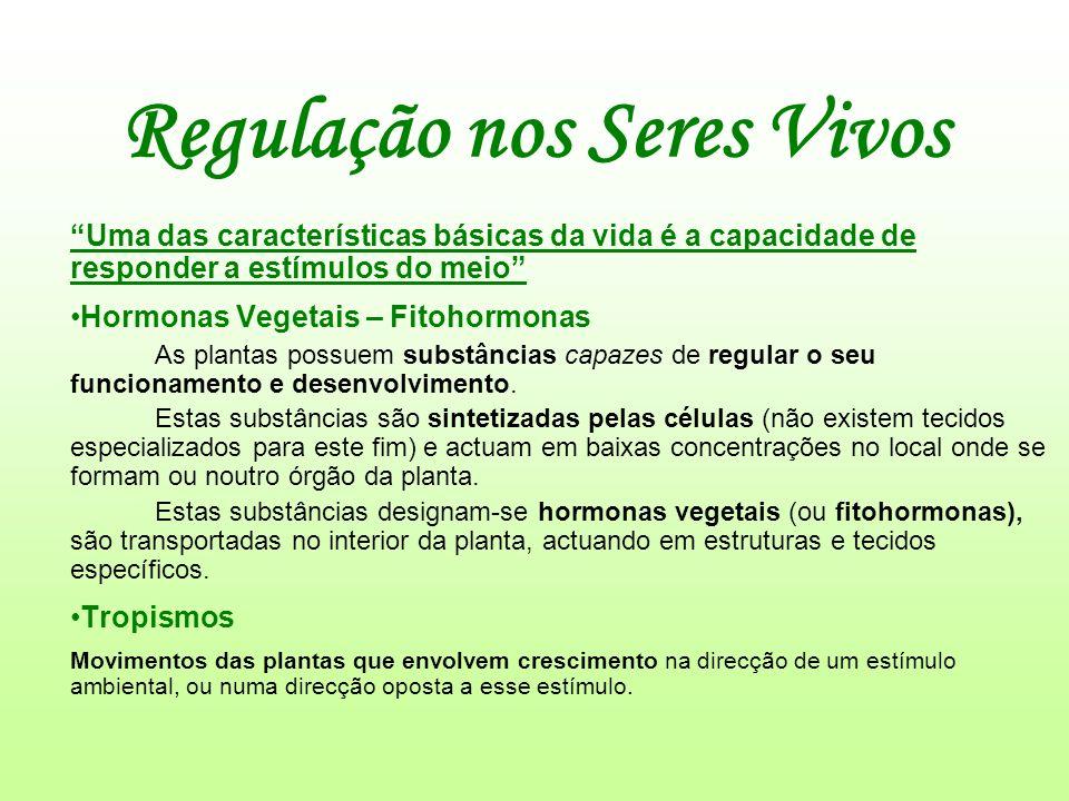 Regulação nos Seres Vivos Uma das características básicas da vida é a capacidade de responder a estímulos do meio Hormonas Vegetais – Fitohormonas As