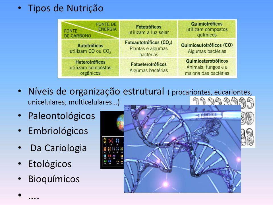 Tipos de Nutrição Níveis de organização estrutural ( procariontes, eucariontes, unicelulares, multicelulares…) Paleontológicos Embriológicos Da Cariol