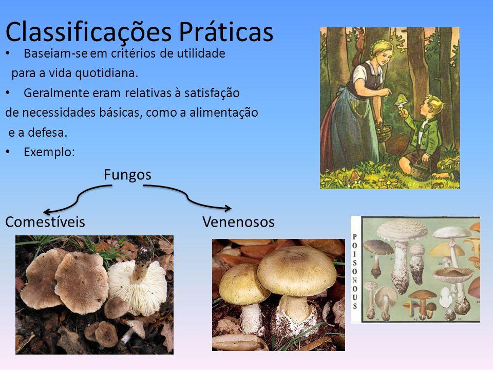 Sistemas de Classificação Racionais Baseiam-se em características (morfológicas, anatómicas, fisiológicas,…) dos seres vivos em estudo.