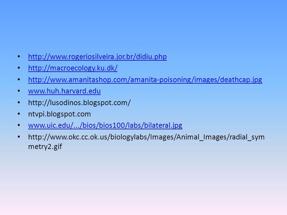 http://www.rogeriosilveira.jor.br/didiu.php http://macroecology.ku.dk/ http://www.amanitashop.com/amanita-poisoning/images/deathcap.jpg www.huh.harvar