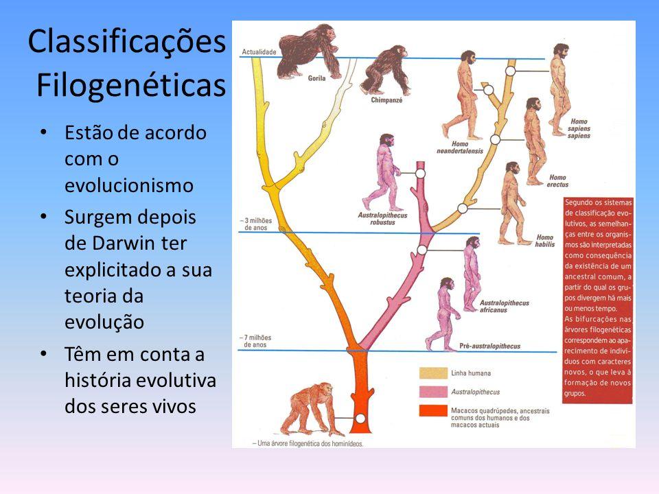 Classificações Filogenéticas Estão de acordo com o evolucionismo Surgem depois de Darwin ter explicitado a sua teoria da evolução Têm em conta a histó