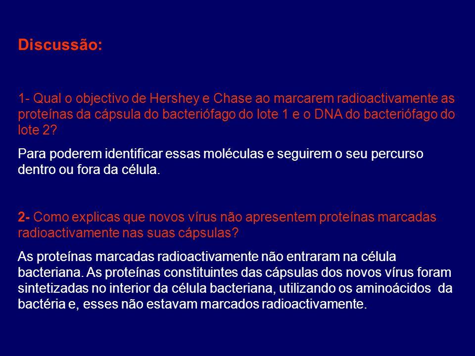 Discussão: 1- Qual o objectivo de Hershey e Chase ao marcarem radioactivamente as proteínas da cápsula do bacteriófago do lote 1 e o DNA do bacteriófa