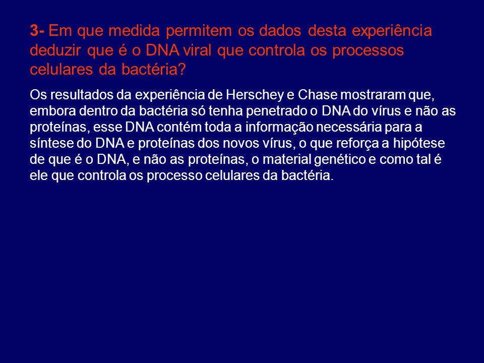 3- Em que medida permitem os dados desta experiência deduzir que é o DNA viral que controla os processos celulares da bactéria? Os resultados da exper