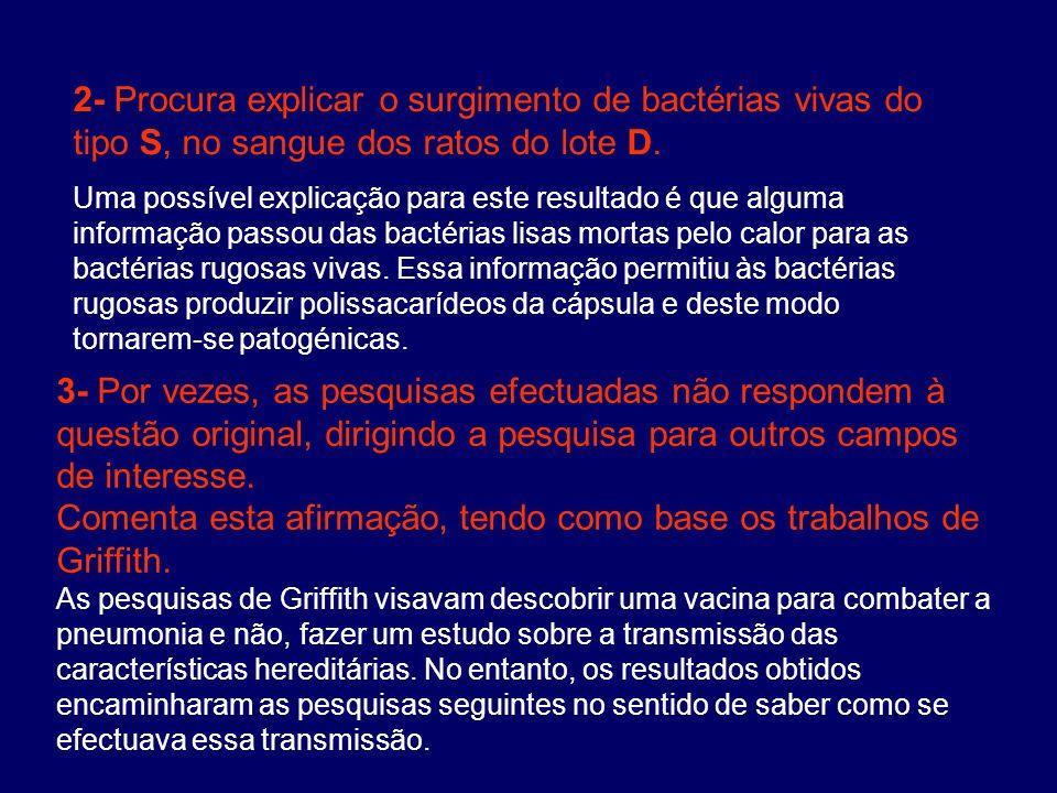 2- Procura explicar o surgimento de bactérias vivas do tipo S, no sangue dos ratos do lote D. Uma possível explicação para este resultado é que alguma