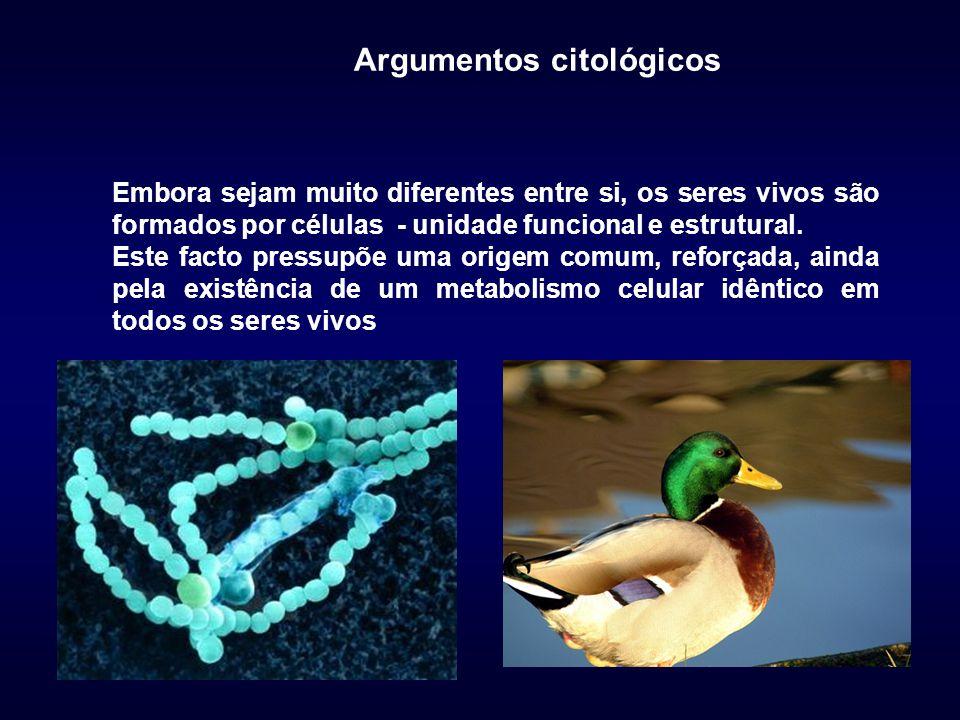 Argumentos citológicos Embora sejam muito diferentes entre si, os seres vivos são formados por células - unidade funcional e estrutural. Este facto pr