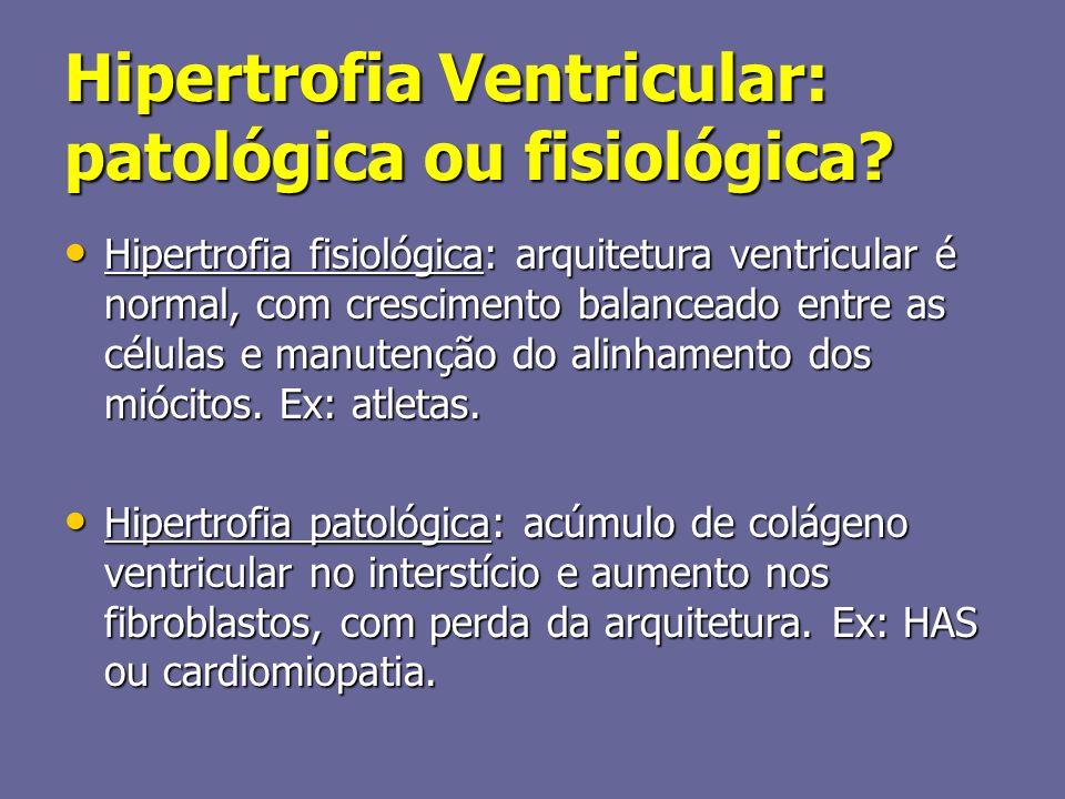Hipertrofia Ventricular: patológica ou fisiológica? Hipertrofia fisiológica: arquitetura ventricular é normal, com crescimento balanceado entre as cél
