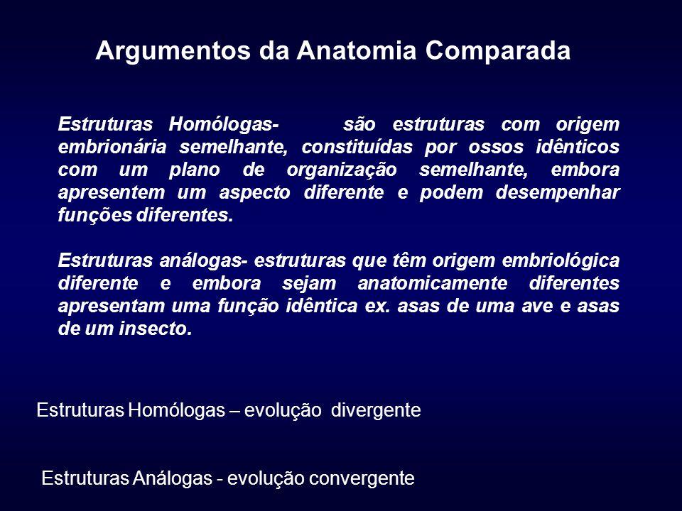 Argumentos da Anatomia Comparada Estruturas Homólogas- são estruturas com origem embrionária semelhante, constituídas por ossos idênticos com um plano de organização semelhante, embora apresentem um aspecto diferente e podem desempenhar funções diferentes.