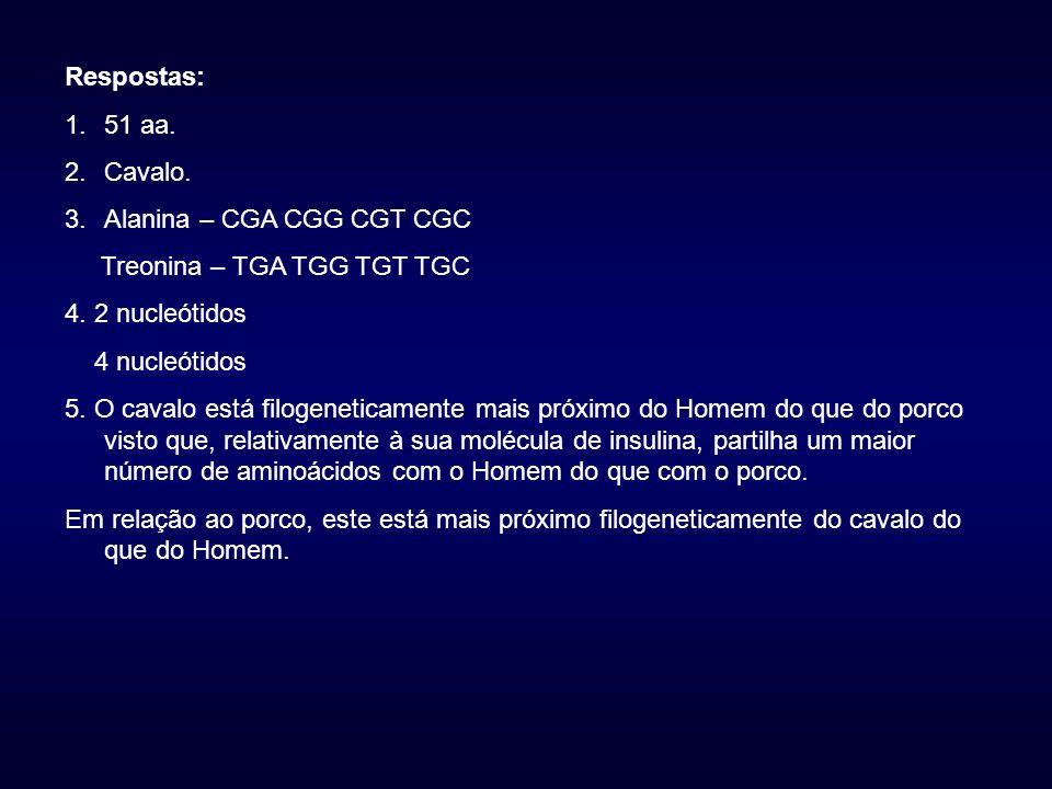 Respostas: 1.51 aa.2.Cavalo. 3.Alanina – CGA CGG CGT CGC Treonina – TGA TGG TGT TGC 4.