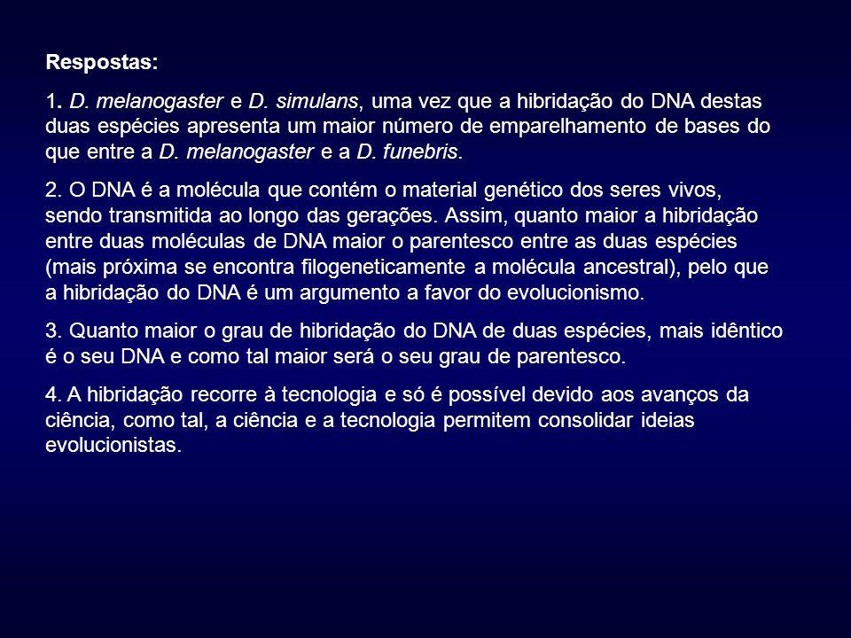 Respostas: 1.D. melanogaster e D.