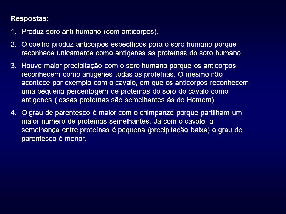 Respostas: 1.Produz soro anti-humano (com anticorpos).