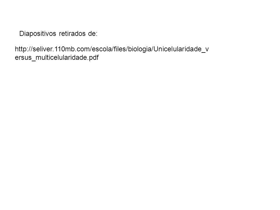 http://seliver.110mb.com/escola/files/biologia/Unicelularidade_v ersus_multicelularidade.pdf Diapositivos retirados de: