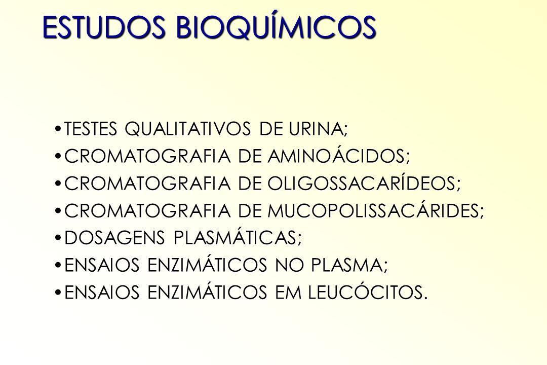 ESTUDOS BIOQUÍMICOS TESTES QUALITATIVOS DE URINA;TESTES QUALITATIVOS DE URINA; CROMATOGRAFIA DE AMINOÁCIDOS;CROMATOGRAFIA DE AMINOÁCIDOS; CROMATOGRAFI