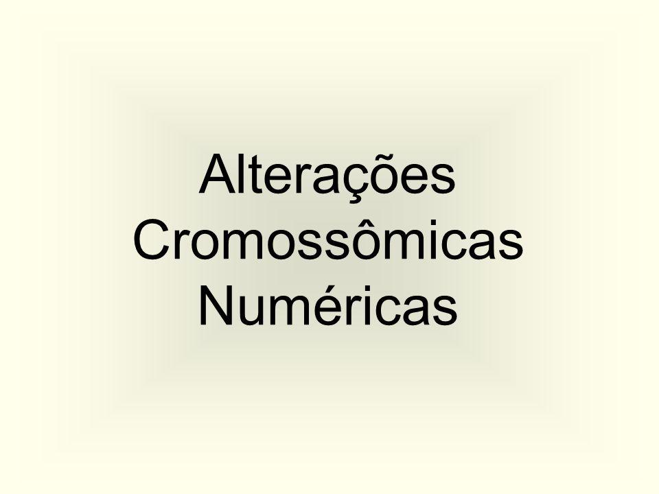 Cariótipo Masculino Normal (46,XY)