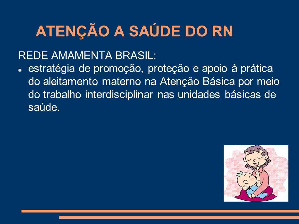 ATENÇÃO A SAÚDE DO RN REDE AMAMENTA BRASIL: estratégia de promoção, proteção e apoio à prática do aleitamento materno na Atenção Básica por meio do tr