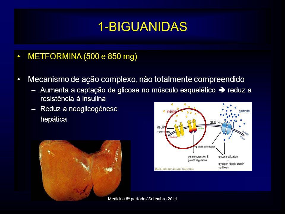 1-BIGUANIDAS METFORMINA (500 e 850 mg) Mecanismo de ação complexo, não totalmente compreendido –Aumenta a captação de glicose no músculo esquelético reduz a resistência à insulina –Reduz a neoglicogênese hepática Medicina 6º período / Setembro 2011