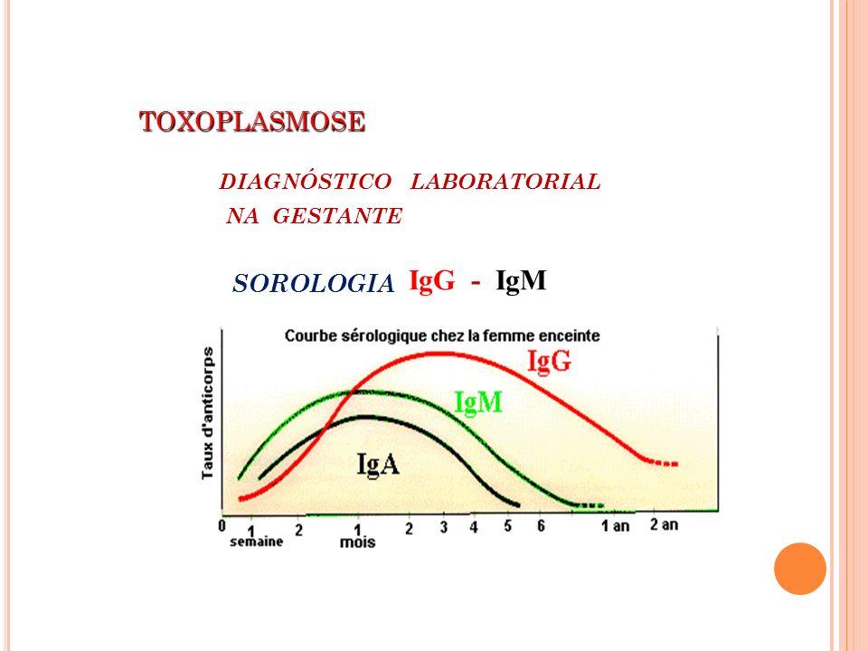 TOXOPLASMOSE TOXOPLASMOSE DIAGNÓSTICO LABORATORIAL NA GESTANTE SOROLOGIA : IgG - IgM