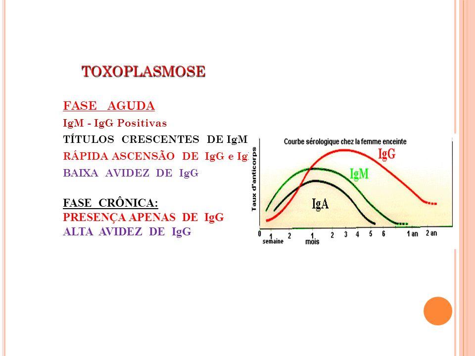TOXOPLASMOSE TOXOPLASMOSE FASE AGUDA IgM - IgG Positivas TÍTULOS CRESCENTES DE IgM RÁPIDA ASCENSÃO DE IgG e IgM BAIXA AVIDEZ DE IgG FASE CRÔNICA: PRES