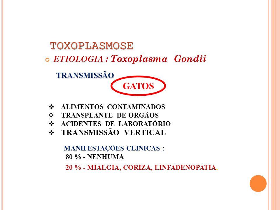 TOXOPLASMOSE TOXOPLASMOSE ETIOLOGIA : Toxoplasma Gondii TRANSMISSÃO GATOS ALIMENTOS CONTAMINADOS TRANSPLANTE DE ÓRGÃOS ACIDENTES DE LABORATÓRIO TRANSM