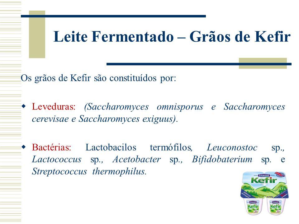 Leite Fermentado – Grãos de Kefir Os grãos de Kefir são constituídos por: Leveduras: (Saccharomyces omnisporus e Saccharomyces cerevisae e Saccharomyc