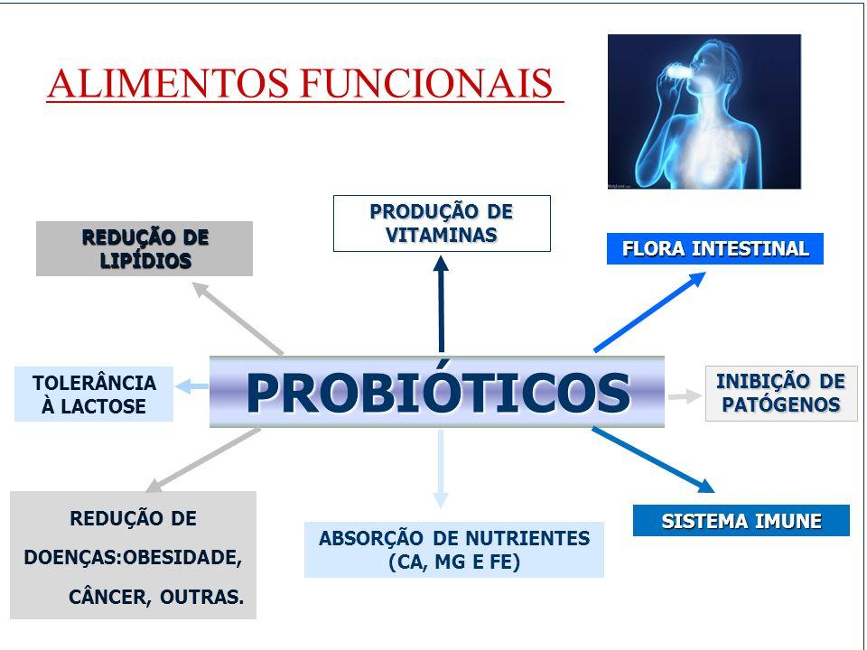 PROBIÓTICOS REDUÇÃO DE LIPÍDIOS PRODUÇÃO DE VITAMINAS FLORA INTESTINAL TOLERÂNCIA À LACTOSE INIBIÇÃO DE PATÓGENOS REDUÇÃO DE DOENÇAS:OBESIDADE, CÂNCER