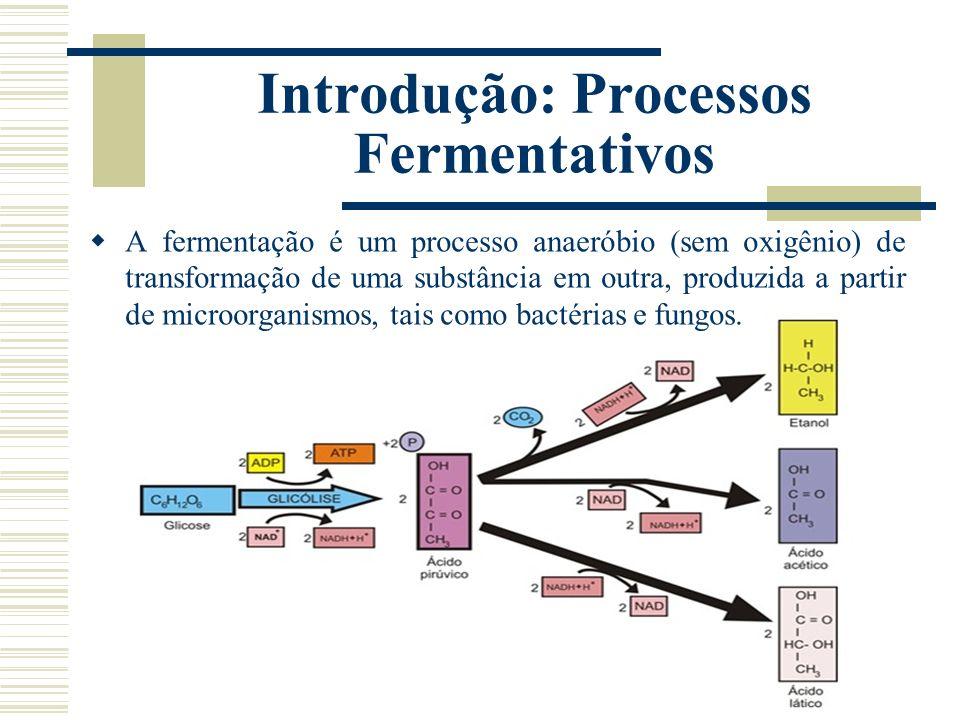 Introdução: Processos Fermentativos A fermentação é um processo anaeróbio (sem oxigênio) de transformação de uma substância em outra, produzida a part