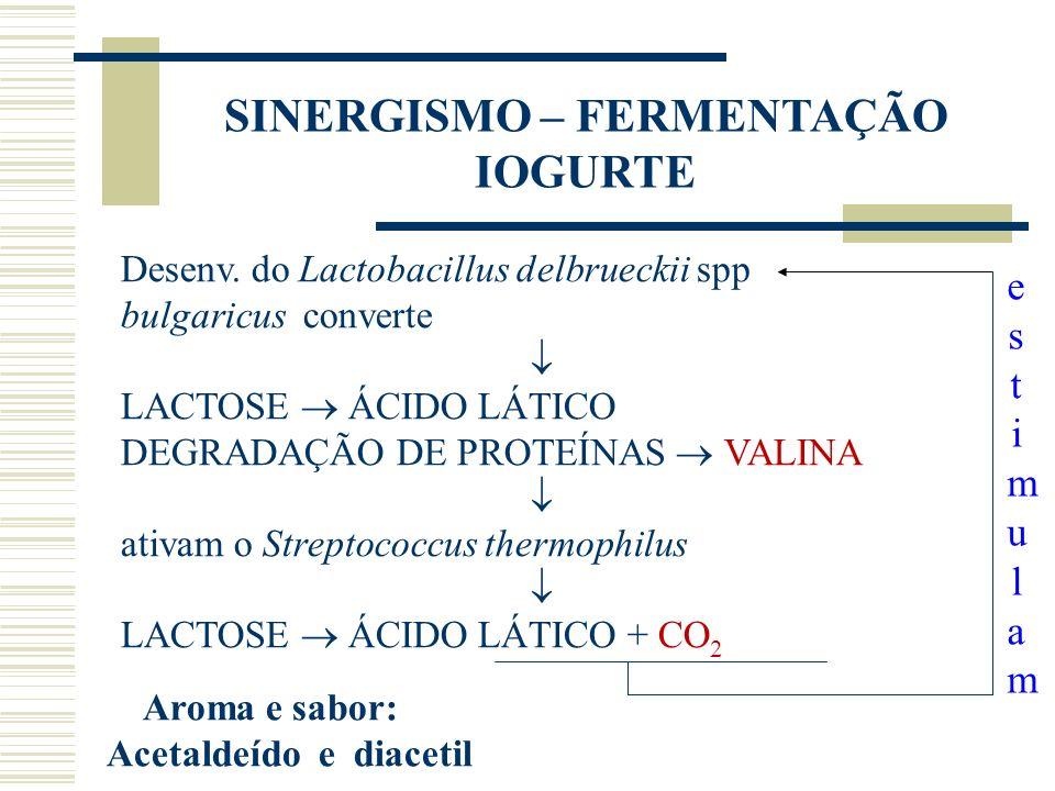 estimulamestimulam SINERGISMO – FERMENTAÇÃO IOGURTE Desenv. do Lactobacillus delbrueckii spp bulgaricus converte LACTOSE ÁCIDO LÁTICO DEGRADAÇÃO DE PR