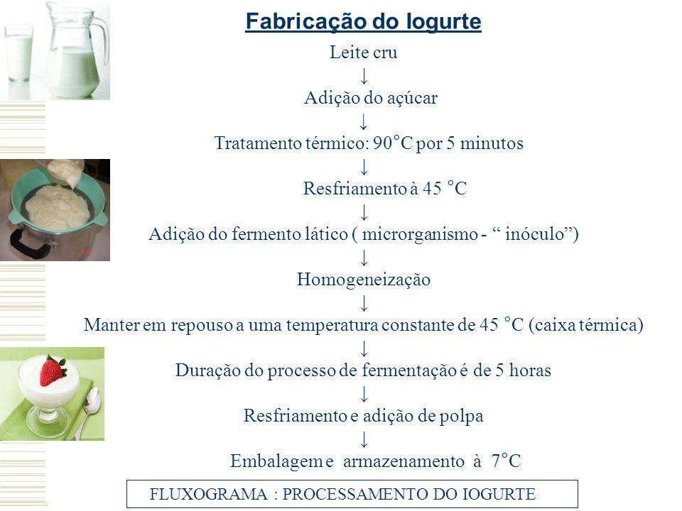 Leite cru Adição do açúcar Tratamento térmico: 90°C por 5 minutos Resfriamento à 45 °C Adição do fermento lático ( microrganismo - inóculo) Homogeneiz