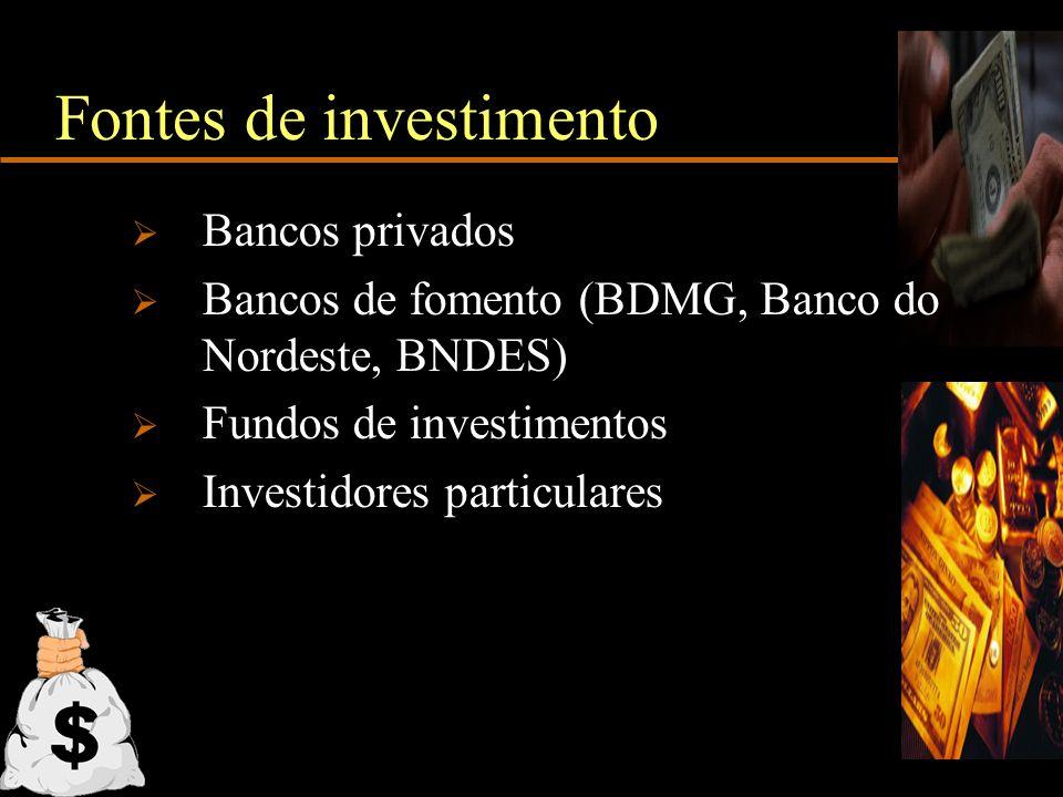 Fontes de investimento Bancos privados Bancos de fomento (BDMG, Banco do Nordeste, BNDES) Fundos de investimentos Investidores particulares