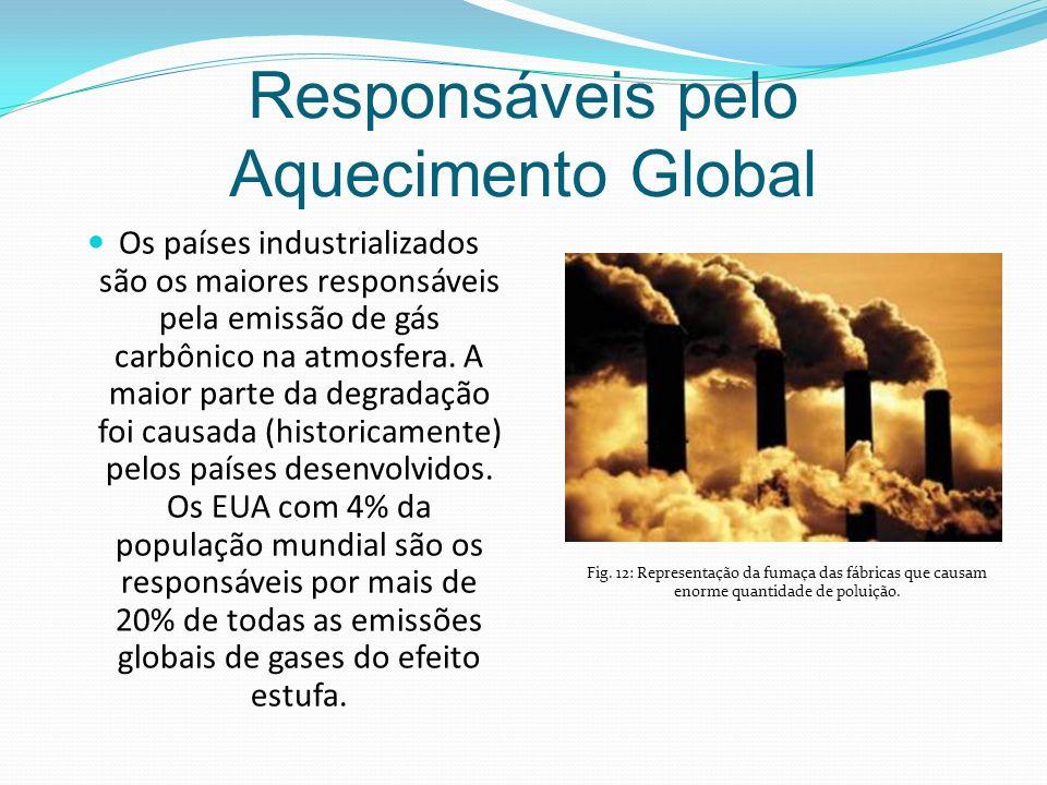 Responsáveis pelo Aquecimento Global Os países industrializados são os maiores responsáveis pela emissão de gás carbônico na atmosfera.