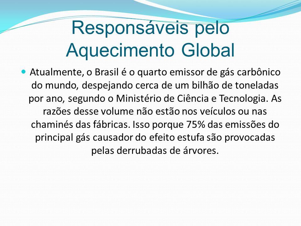 Responsáveis pelo Aquecimento Global Atualmente, o Brasil é o quarto emissor de gás carbônico do mundo, despejando cerca de um bilhão de toneladas por ano, segundo o Ministério de Ciência e Tecnologia.