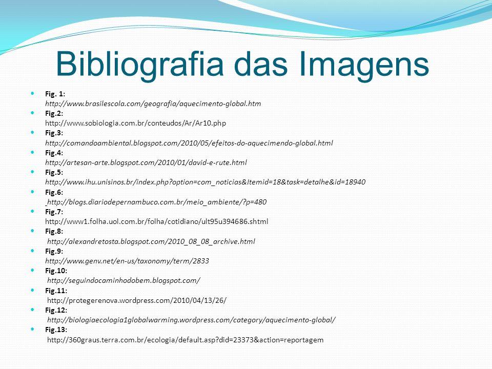 Bibliografia das Imagens Fig.