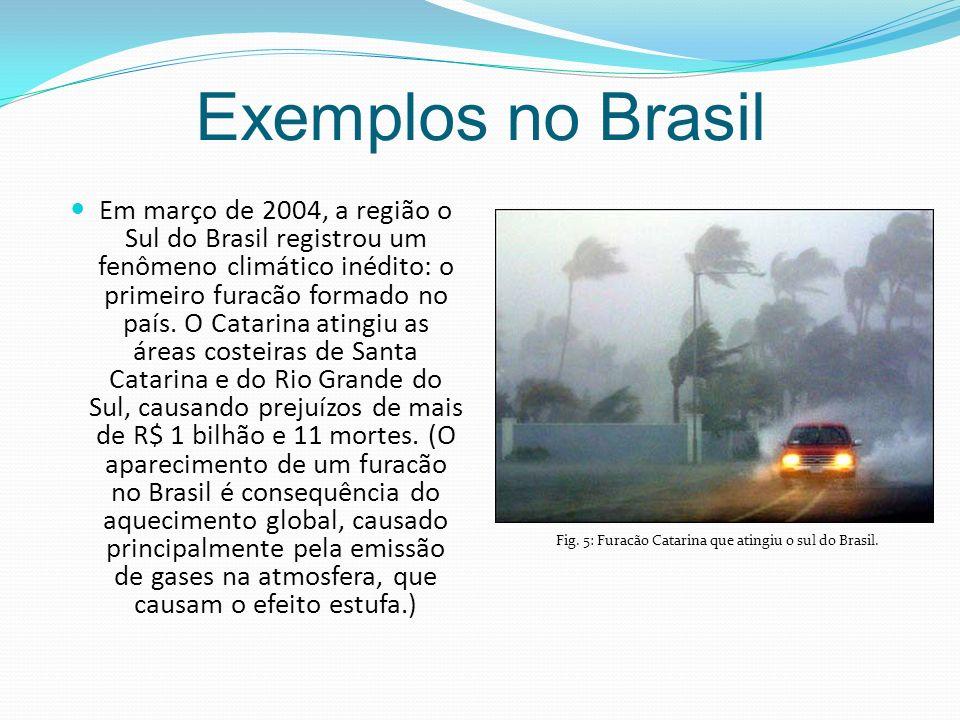 Exemplos no Brasil Em março de 2004, a região o Sul do Brasil registrou um fenômeno climático inédito: o primeiro furacão formado no país.