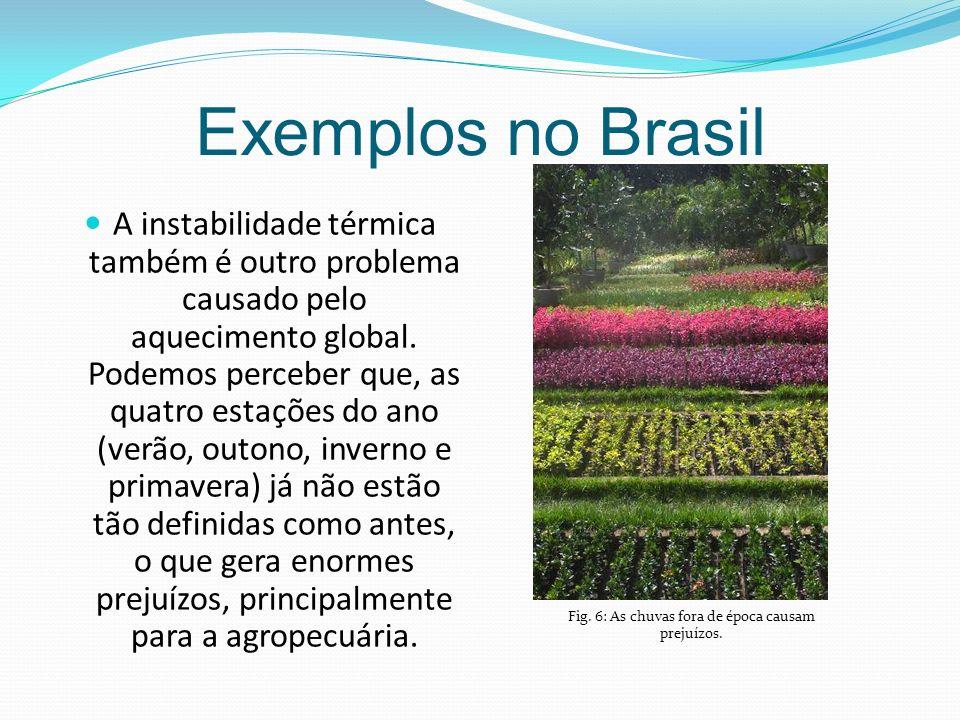 Exemplos no Brasil A instabilidade térmica também é outro problema causado pelo aquecimento global.