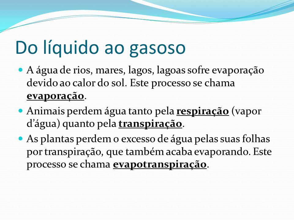 Do líquido ao gasoso A água de rios, mares, lagos, lagoas sofre evaporação devido ao calor do sol. Este processo se chama evaporação. Animais perdem á