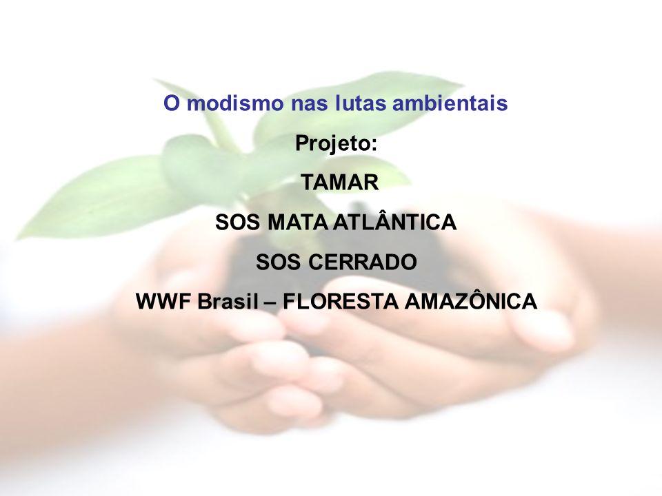 O modismo nas lutas ambientais Projeto: TAMAR SOS MATA ATLÂNTICA SOS CERRADO WWF Brasil – FLORESTA AMAZÔNICA