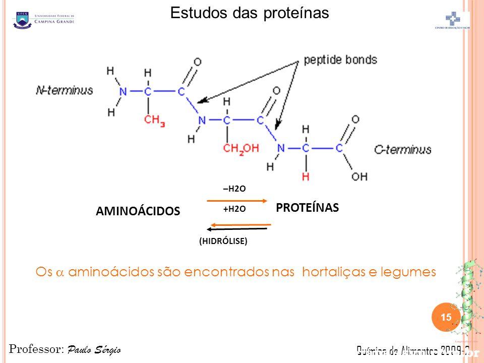 Professor: Paulo Sérgio Química de Alimentos 2009-2 Estudos das proteínas AMINOÁCIDOS PROTEÍNAS –H2O +H2O Os aminoácidos são encontrados nas hortaliças e legumes (HIDRÓLISE) parana@svn.com.br 15